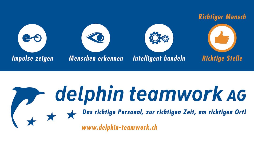 Redesign und Corporate Design für delphin teamwork AG